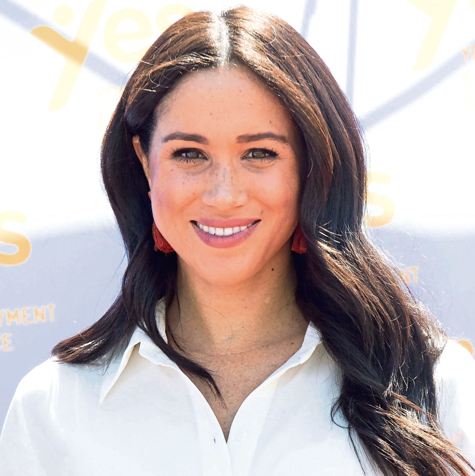 Taken to tusk: Meghan narrated a documentary about elephants