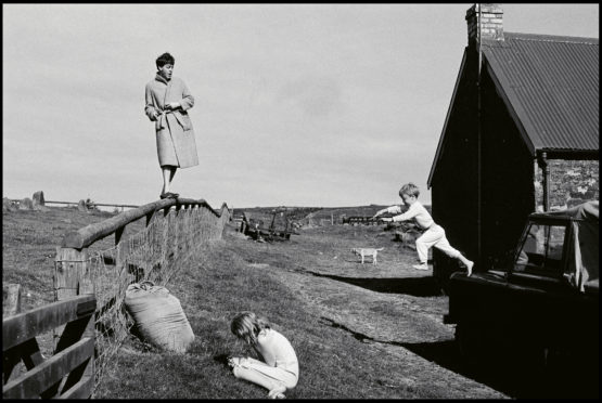 Linda McCartney's photo shows Paul on fence, Stella at front as James jumps from the Land Rover at their Mull of Kintyre farmhouse in 1982