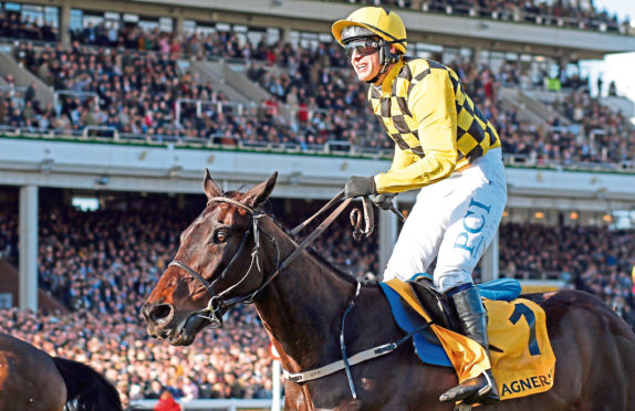 Packed stands watch Paul Townend win Cheltenham's Gold Cup