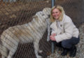 TV presenter Philippa Forrester says wolves are no concern – they won't attack humans, just stare at you
