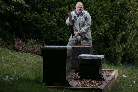 Stuart Hood tends to one of the new beehives