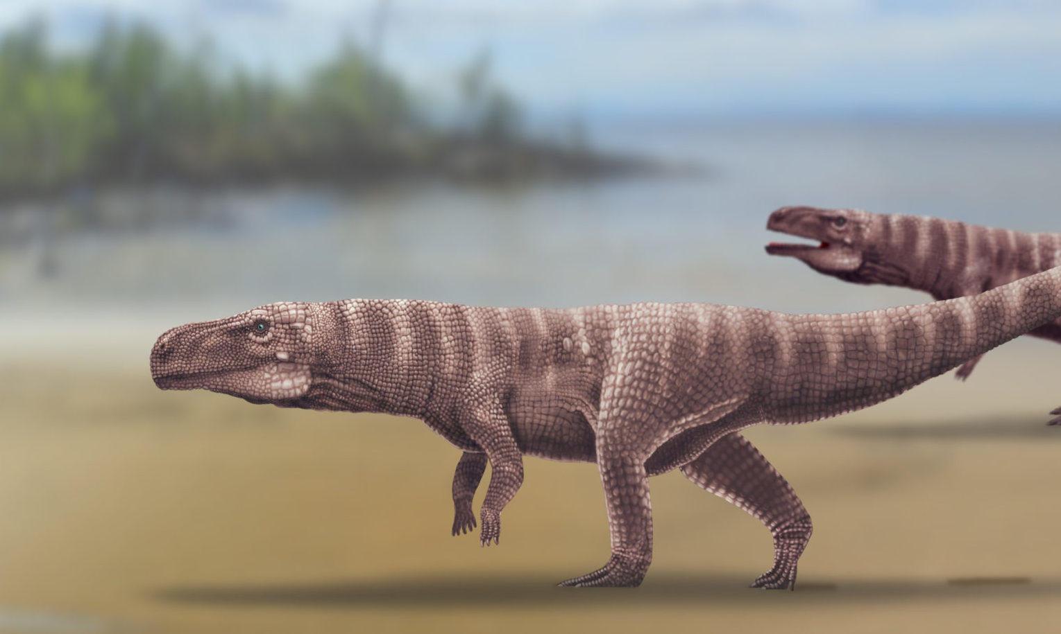 An artist's impression of the ancient crocodile species thought to have made the footprints discovered at the Sacheon Jahye-ri site in South Korea