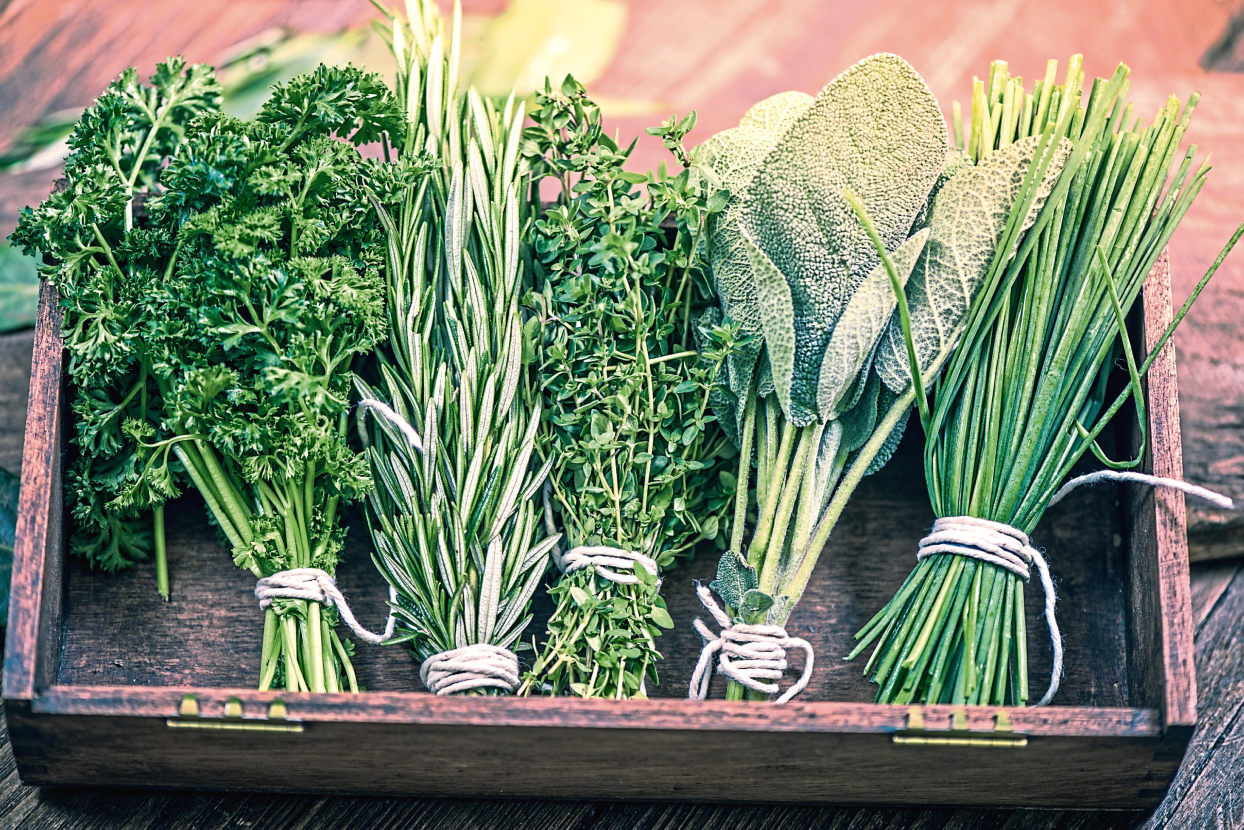 Growing your own herbs is the perfect lockdown task.