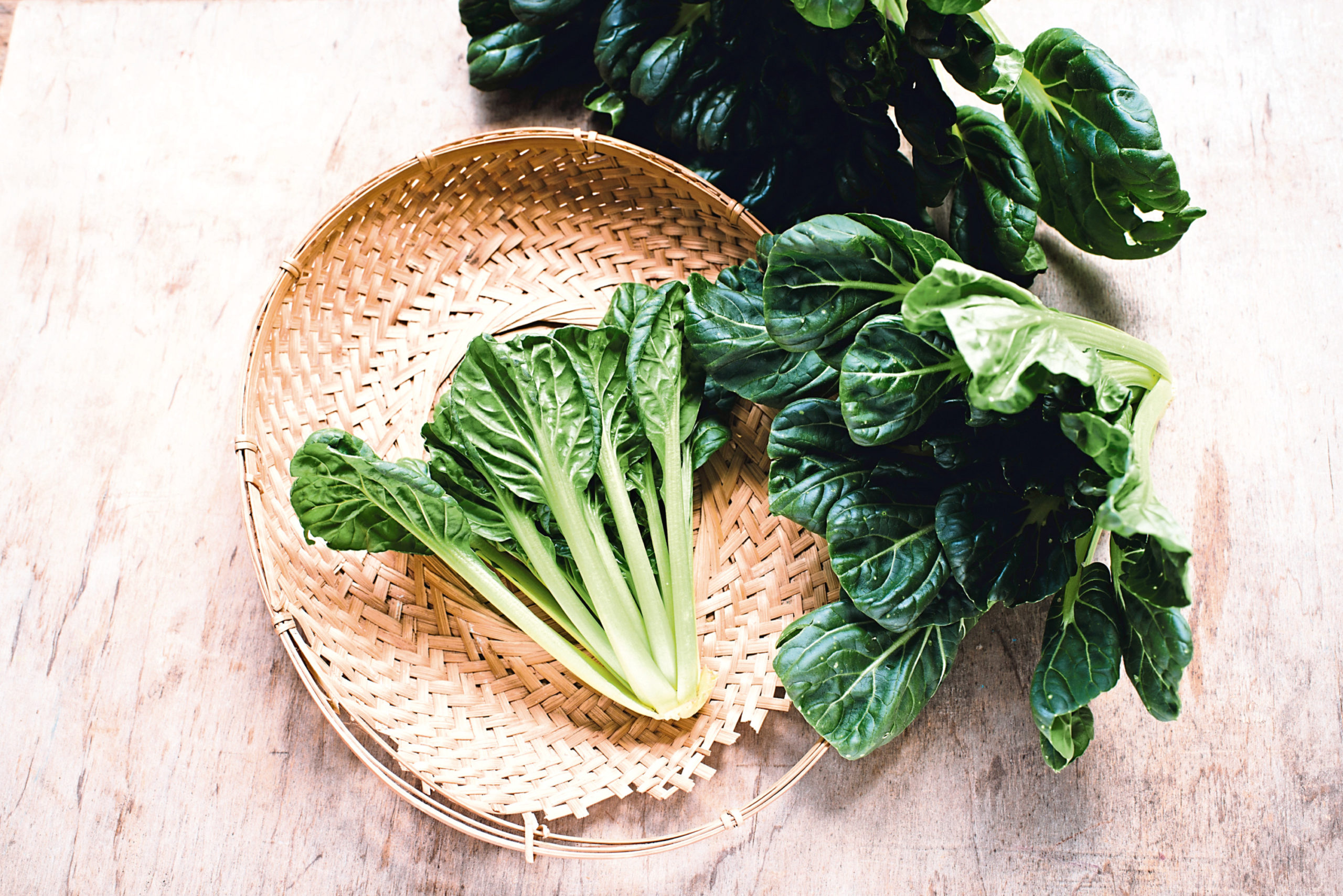 Pak choi is quite easy to grow in Scotland