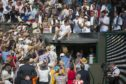 Andy climbs up to the Centre Court players' box after 2013 Wimbledon final but mum isn't there