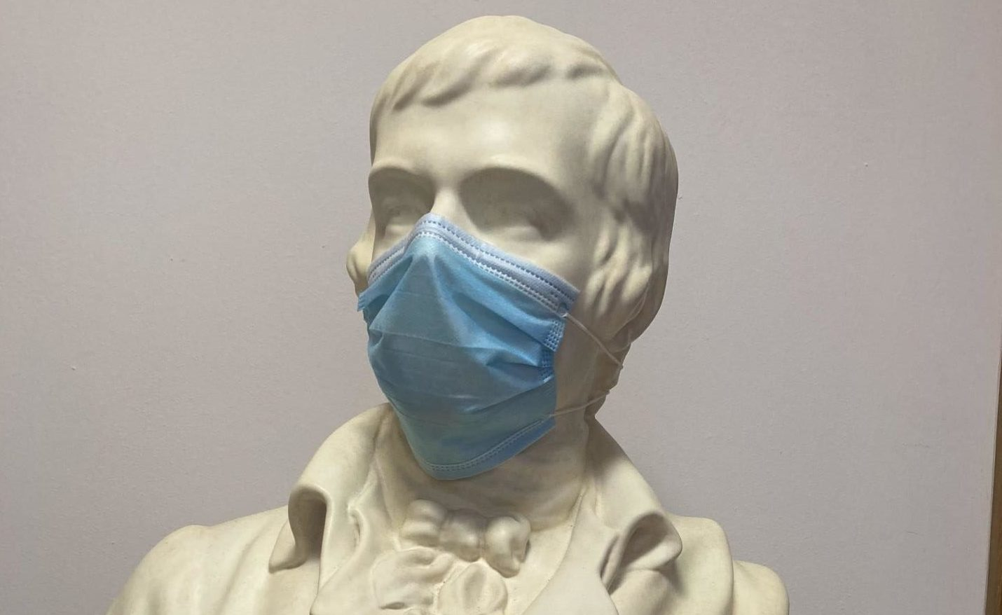A statue of the poet has been given a face mask as the Robert Burns Birthplace Museum reopens following lockdown
