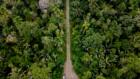 The road cutting through the Manu Biosphere Reserve.