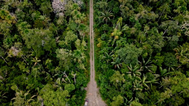 The road cutting through the Manu Biosphere Reserve.