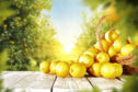 Scots doctor James Lind discovered how lemons could help sailors sick with scurvy during a famous 1747 experiment