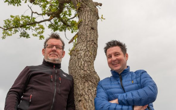 The Milarrochy Oak, nominated for Tree of the Year separately by Gary Chittick and John Cuthbert
