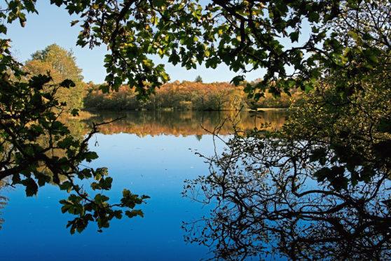 Mugdock Country Park, just outside Milngavie