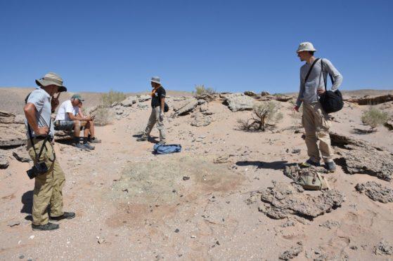 Members of a University of Edinburgh-led team in the Gobi Desert in Mongolia where they discovered multiple complete skeletons of a new species of toothless, two-fingered dinosaur named Oksoko avarsan