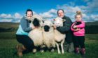 Barbara, Glen and Ava Blacklock with Doris the Dorset Down and her Valais Blacknose lambs at Kirkconnell, Dumfriesshire
