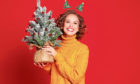A tree needn't be just for this Christmas, plant it outdoors and it'll be around for years