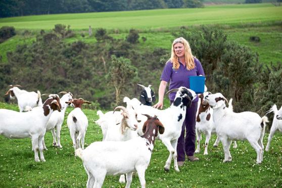 Louise Nicoll of Newton Farm Holidays, Forfar.