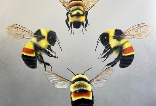 High Society, Acrylic and Spray Paint on Canvas, Louise McNaught.