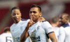 Alfredo Morelos celebrates scoring against Aberdeen