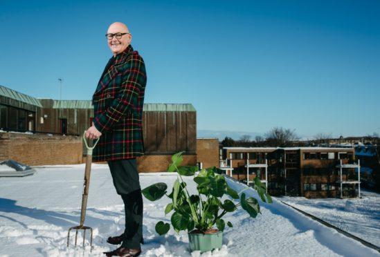 Gardening presenter Murdo MacDonald in his rooftop garden