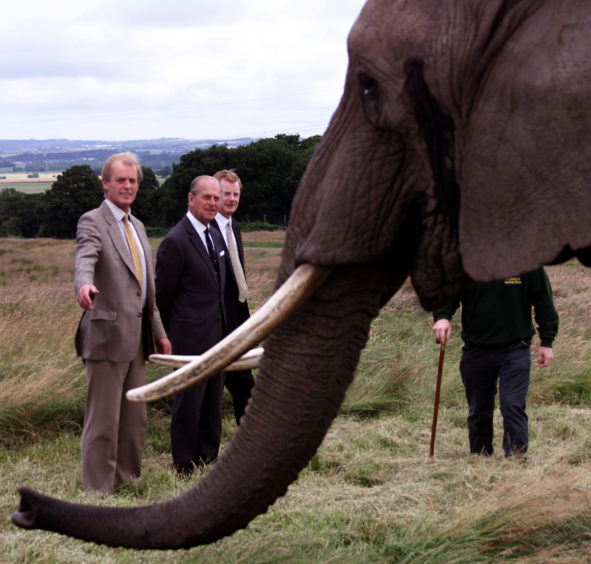 """The Duke of Edinburgh (centre) accompanied by Lord Derby (right) and Mr David Ross, Manager of Knowles Safari Park, meeting with """"Chota"""" the oldest elephant in the herd at the North West Safari Park."""