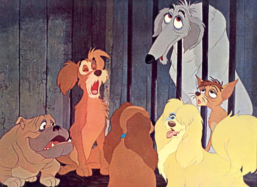 A scene from The Lady and the Tramp.