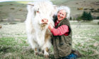 Rosie Douglas and Molly the Highland Cow.