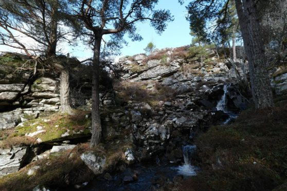 Creag Phadruig at Mar Lodge Estate - a whisky bothy lies hidden below the rock face behind the trees.
