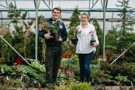 Colin McIndoe and his sister Kathleen Jenkins, owners of The Mill Garden Centre in Armadale