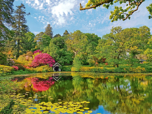 All the hard work at Bargany Estate in Ayrshire has been worth it, revealing the garden as it was intended to be seen, as these spectacular images show