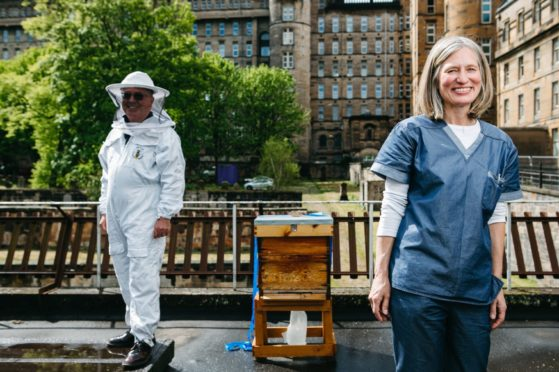 John Stuart and Dr Hilary Wilson, by the hive at Glasgow Royal Infirmary