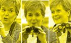 Nicola Sturgeon focused on the campaign trail at the Scottish Seabird Centre, North Berwick