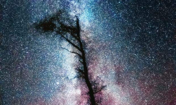 The Milky Way is illuminated above Galloway Dark Sky Park in Galloway Forest, near Dumfries