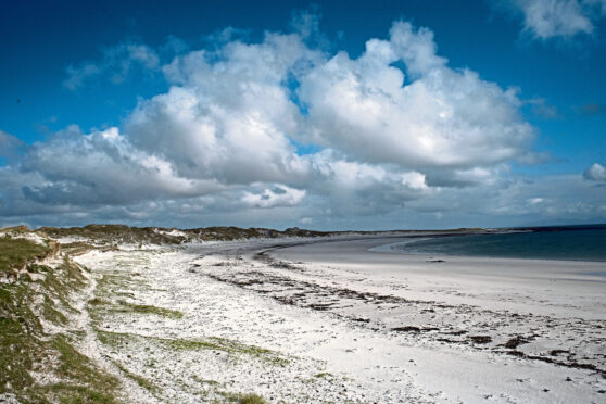 The tiny grass was found on sand dunes in North Uist