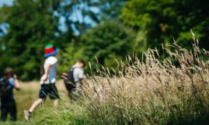 Areas of Glasgow's Queen's Park have been left uncut for several months to allow for rewilding