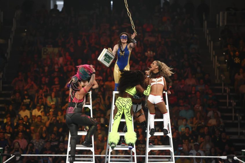 Nikki at the top of the ladder to win a WWE title opportunity