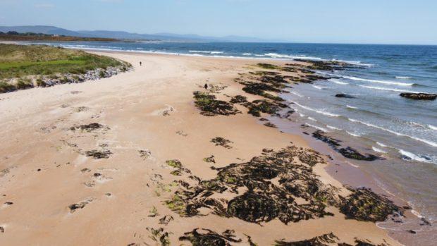 A view of Dornoch Beach