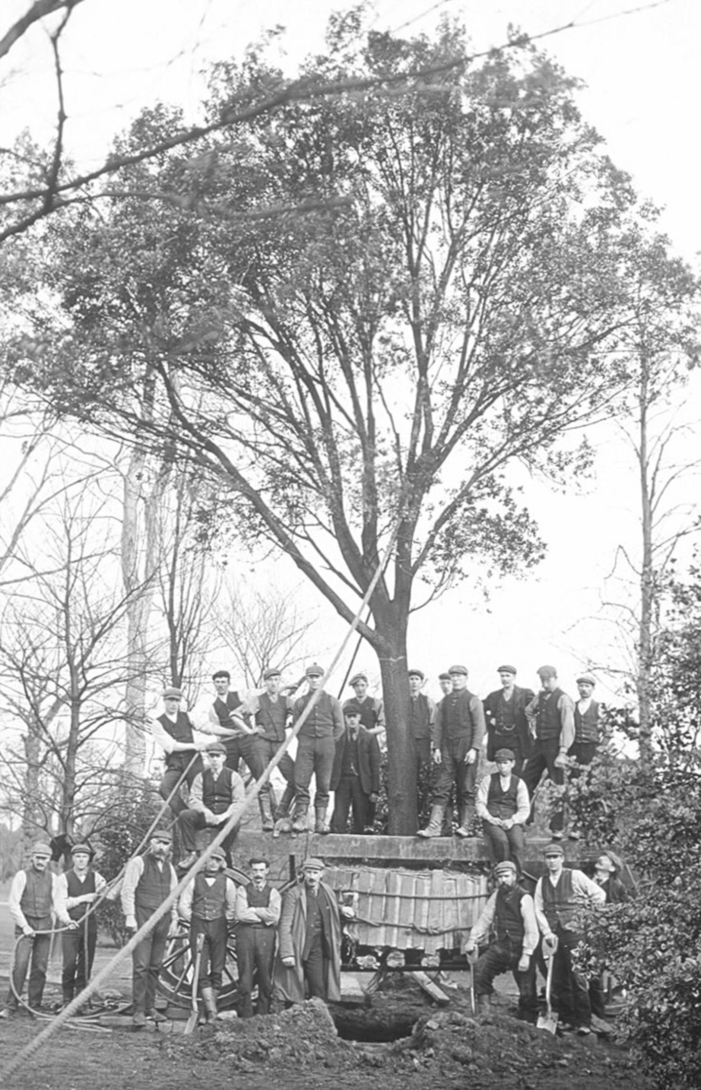 Diggers during Royal Botanic Garden Edinburgh's big move, tree by tree, plant by plant, from Leith to Inverleith in 1822