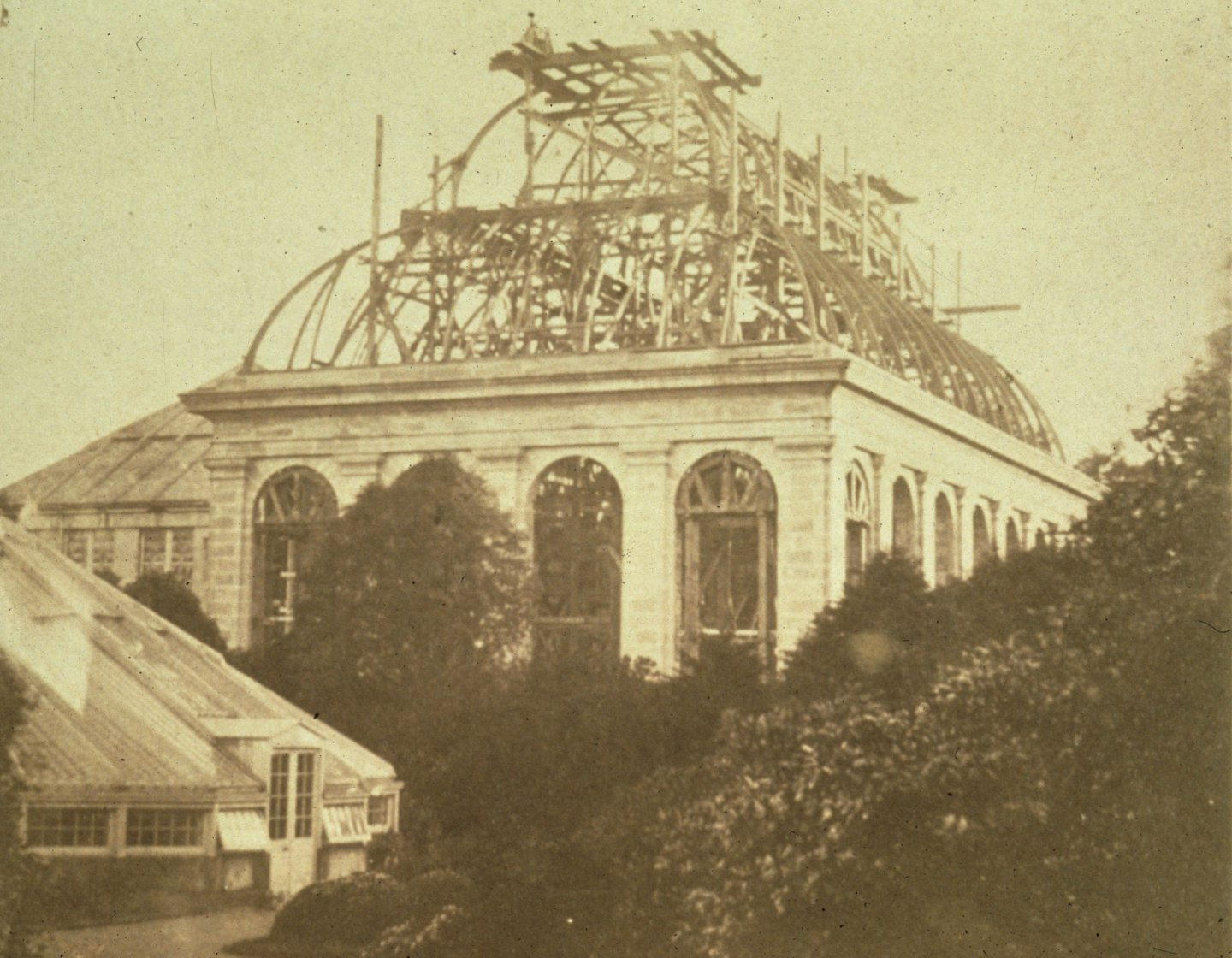 Temperate Palm House under construction in the 1850s