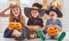 Pumpkins are as much part of Halloween fun as fancy-dress