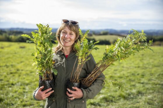 Alexandra Mackenzie with a few saplings to be planted in the Glasgow Children's Wood.