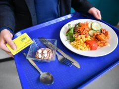 A motion to extend free school meals over the holidays was rejected by MPs last week (Ben Brichall/PA)