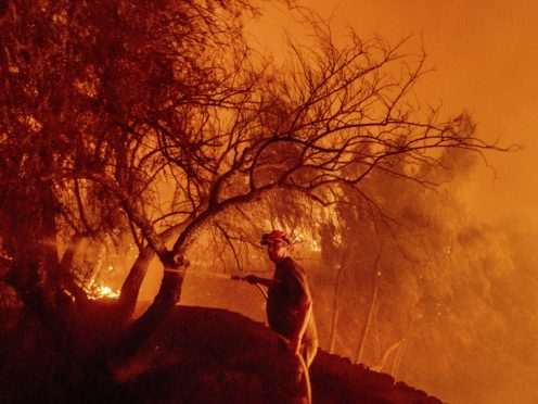 Bruce McDougal hoses down vegetation while working to save his home from the Bond Fire (Noah Berger/AP)
