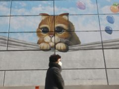 A woman wearing a face mask passes a mural on a shopping centre wall in Seoul, South Korea (Ahn Young-joon/AP)