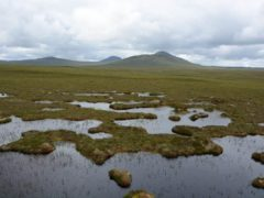 The Flow Country in Caithness and Sutherland (Siobhan Fraser/PA)