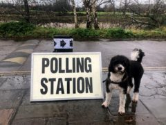 Elections are due to be held in May (Claire Hayhurst/PA)