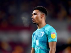 Junior Stanislas was subjected to racist slurs and insults about his family after scoring Bournemouth's winning goal in a 1-0 victory at Stoke (John Walton/PA)