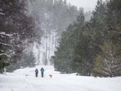 A couple cross-country skiing, with their dog, in the Cairngorm National Park near Aviemore. Picture date: Thursday February 4, 2021.