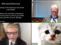 Texas lawyer Rod Ponton said the Zoom cat video was a 'good laugh for the country' (Judge Roy Ferguson/394th District Court of Texas/PA Media)