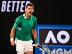 Novak Djokovic screamed with relief (Andy Brownbill/AP)