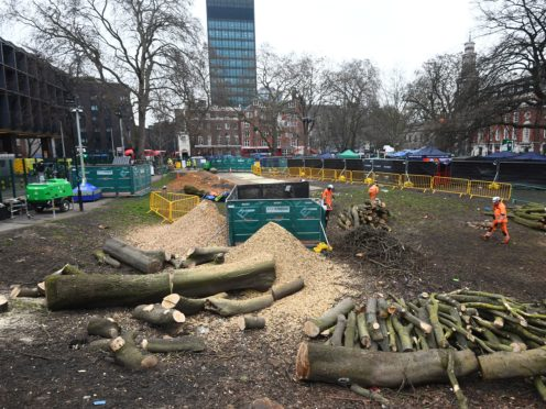 Felled trees at the anti-HS2 camp at Euston Square Gardens, London (Victoria Jones/PA)