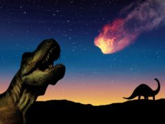 What killed the dinosaurs and where did it come from? (Gerd Altmann/Pixabay)